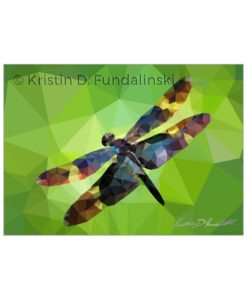 Fundalinski - Low Poly Dragonfly