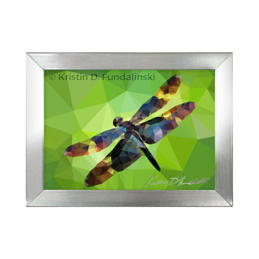 Fundalinski - Low Poly Dragonfly