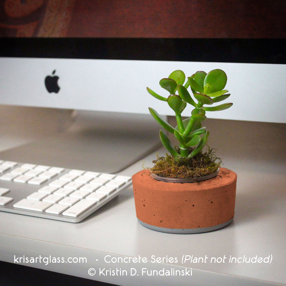 Concrete holder is perfect for your little desk plant